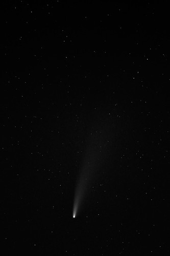 1827  Comet C 2020F3 Neowise in black and white