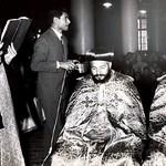 الأنبا فيلبس مطران الدقهلية ورئيس دير مارجرجس بميت دمسيس وبلاد الشرقية (27)