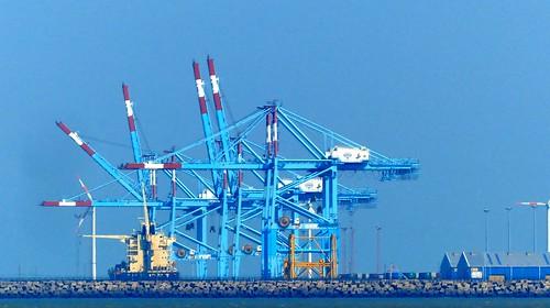 Blankenberge Havenkranen in Zeebrugge