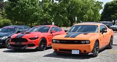 Hamilton July Car Meet