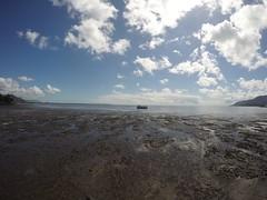 Cairns_Esplanade_20150829_0005