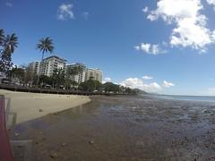 Cairns_Esplanade_20150829_0004