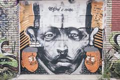Montreal Graffiti / Street Art