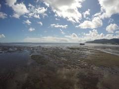 Cairns_Esplanade_20150829_0006