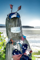 Driftwood with face mask and American Flag Decorations