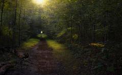 Battlefield Path