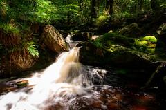 Heart of Statte river