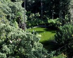 Palácio da Regaleira Gardens