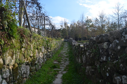 The old road to the medieval bridge