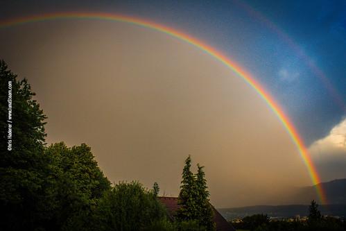 Yesterday's Rainbow (1)