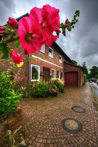 Schleswig-Holstein - 197