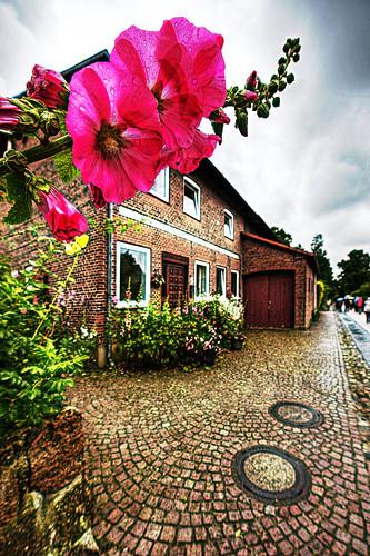 Schleswig-Holstein - 198_GMIC