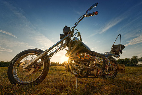 Harley Davidson .......