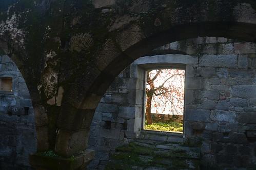 Mosteiro de Santo André de Ancede XVI