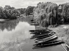 barques à fond plat, delta de la Sauer, Bas Rhin