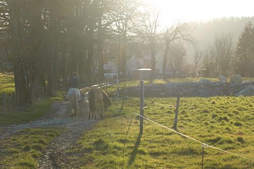 Horse rider @ Chapeiry