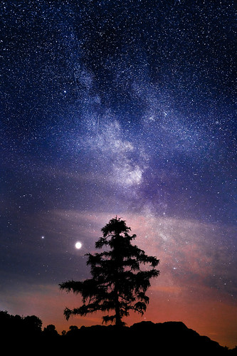 My first Milky Way shot