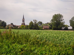 Hondeghem   l'église Saint-Omer (3) - Photo of Strazeele
