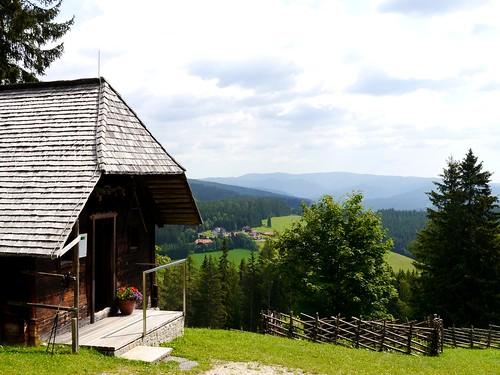 Waldheimat   /   Sylvan homeland