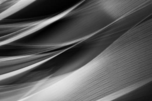 Abstract #22 [Explored} ©2020 karp
