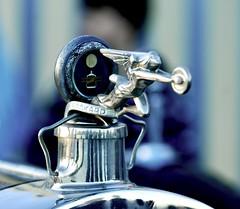 Packard Auto Symbol