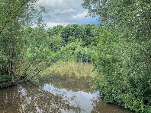 Wemmel-Beverbos- pond