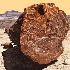 Petrified Forest NP [Arizona]
