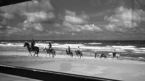 Horse girls summer holiday happiness. Texel, The Netherlands. LeicamCron35Asph.