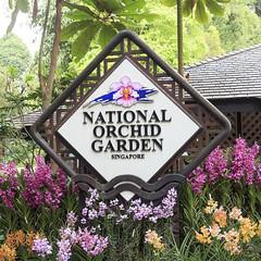 Botanic Gardens [Singapore]
