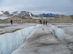 Winding through crevasses on the Llewellyn Glacier