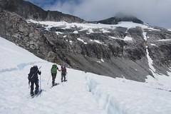 Navigating crevasses on Taku Glacier