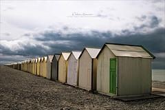 Les petites maisons - #DH849