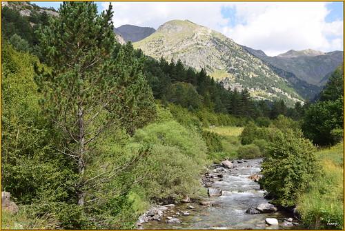 Río Aguas Limpias (Sallent de Gállego, Aragón, España, 23-7-2020)