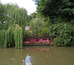 Coventry Canal (Northern Section)