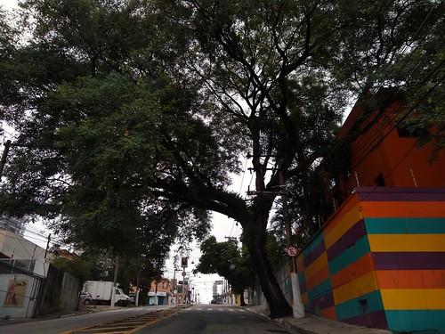 Rua Cerro Cora Alto da Lapa