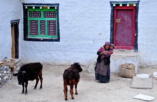Nepal- Mustang- Geling