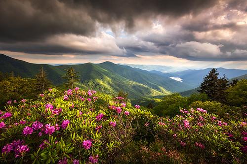 Blue Ridge Parkway North Carolina Mountain Landscape Asheville NC