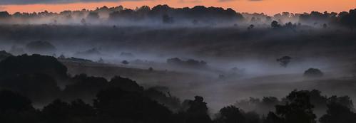 Valley of Dawn Mist