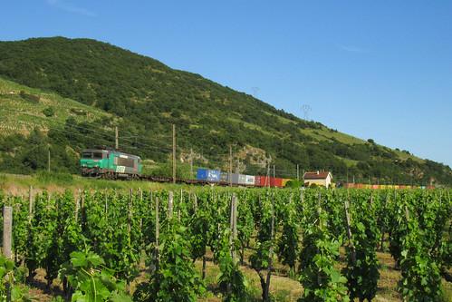 Une locomotive assortie aux vignes