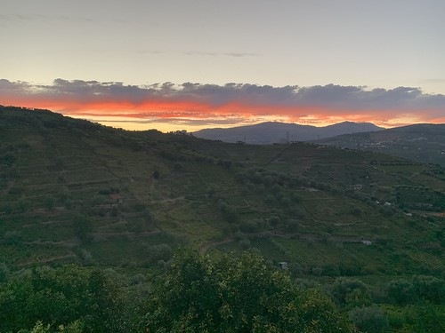 Sunset over the Portuguese Portwine Vineyards