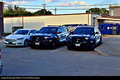 Celina PD 2020 Ford Police Interceptor Utilities