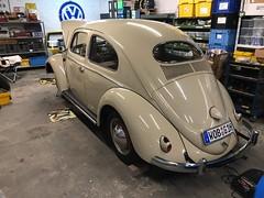 L 275 light beige 1954 VW 1200 Tip 11C
