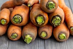 Close-up of fresh ripe carrots
