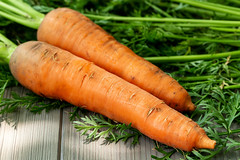 Young fresh carrots with green leaves