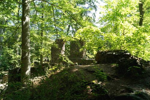 2020 08 01 Klosterpark Altzella (1)