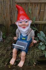 1300450_Gartenzwerg_mit_Laptop