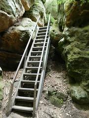 2020 Sächsische Schweiz, 2. Tag, Kirnitzschtal Kuhstall