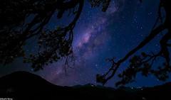 Estes Park Colorado Stary Night
