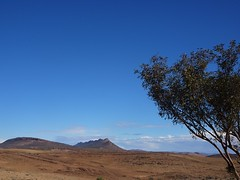 Flinders Ranges South Australia. A rugged landscape near Hawker and Hookina.