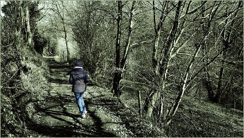 Entre la Haie des Pauvres et Wachiboux, Dolembreux, Sprimont, Belgique
